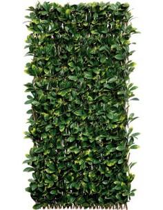 Celosia mimbre con hojas laurel willgreen 1x2 de nortene