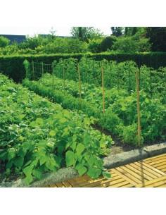 Malla entutor trellinet 35/2x025 verde de nortene