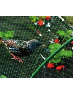 Malla antipajaros birdnet 5380/2x05m verde de nortene
