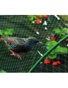 Malla antipajaros birdnet 5380/2x10m verde de nortene